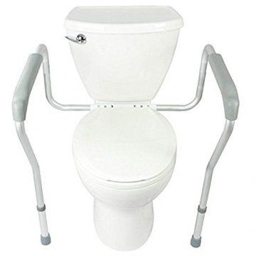 Healthline Trading Toilet Safety Rails
