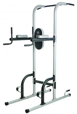 Golds Gym Free Standing Pull Up Bars