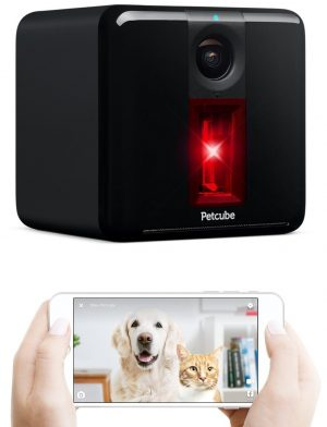 Petcube-pet-cameras