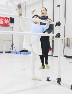 WYZworks Portable Ballet Barres