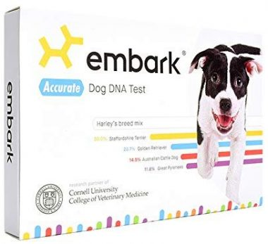 Embark Dog DNA Tests