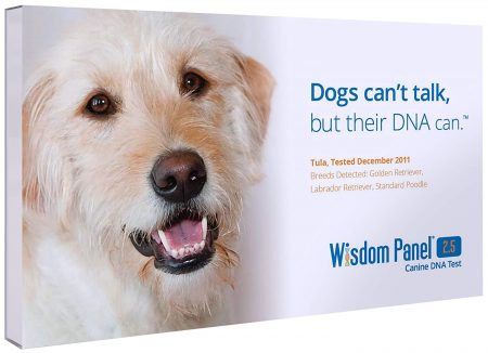 Mars Veterinary Dog DNA Tests