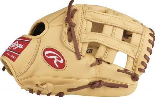 Rawlings Baseball Gloves