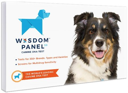 Wisdom Health Dog DNA Tests