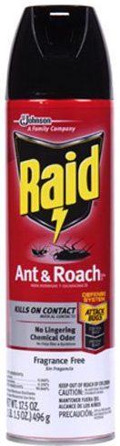 Raid Ant Killers