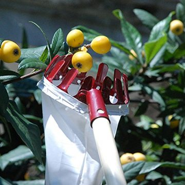 Home-organizer Fruit Pickers